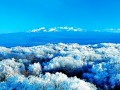 长白山冬季旅游优惠办法今起实施